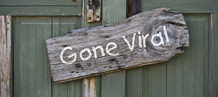 A wooden sign reading Gone Viral