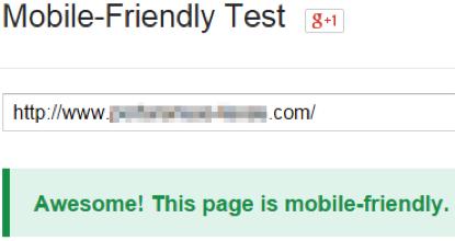 mobile_friendly_test_success