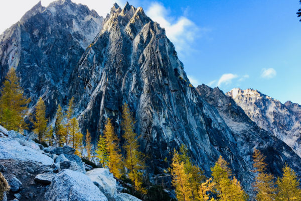 Shea_Enchantments1