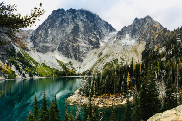 Shea_Enchantments9